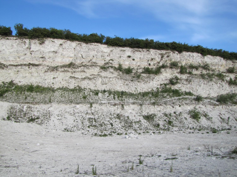 Chalk cliff East Pit